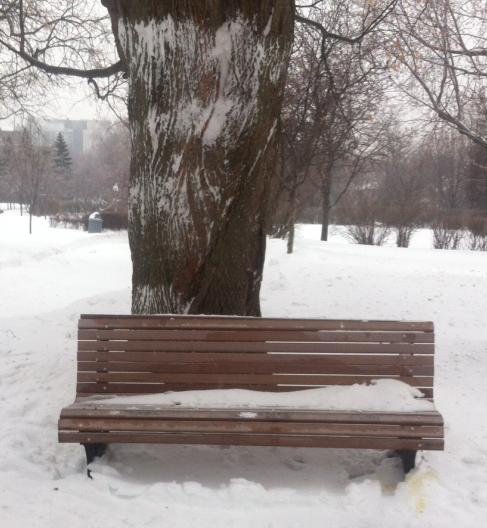 Bench_clear