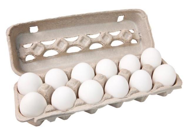 EggCarton