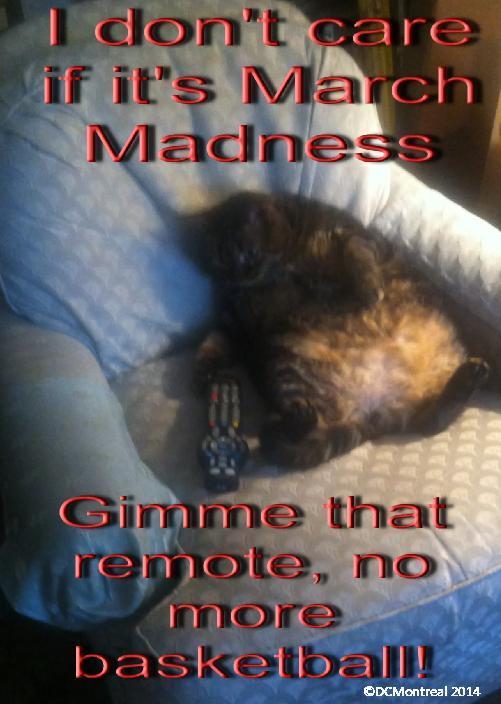 March Madness Overdose