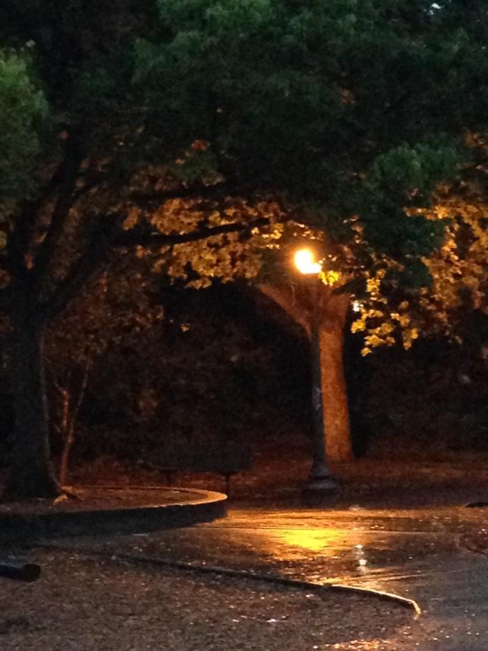 Park_Rain_2