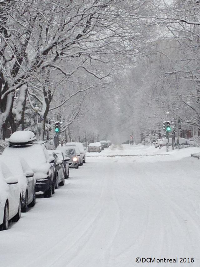 Snow_4