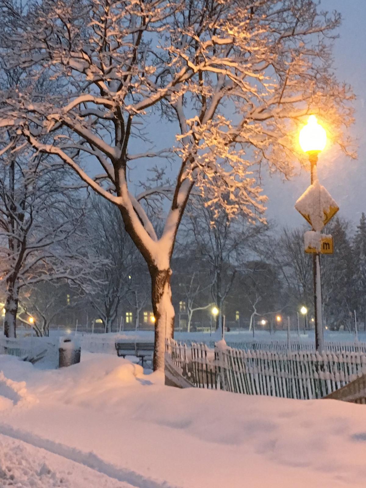 Winter's Last Gasp? Please…