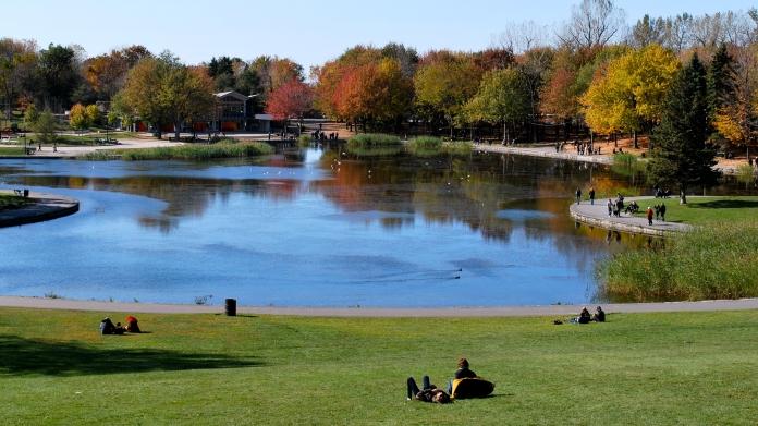 beaver_lake_parc_mont_royal